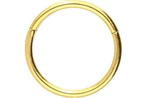 PIERCINGLINE Chirurgenstahl Segmentring Clicker   Piercing Ring Septum Helix Tragus   Farb & Größenauswahl
