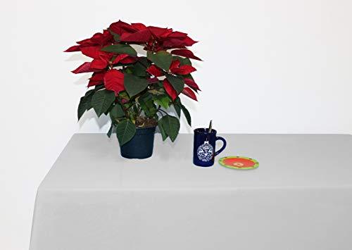 Perfect Textil Mantel Mesa Rectangular Color Liso