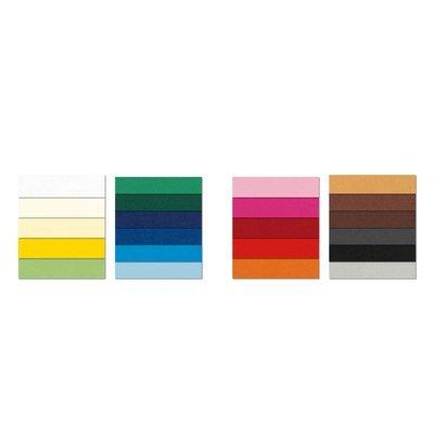 Favini A3300A1 - Etiquetas de identificación por colores (pH Neutro, paquete de 10), multicolor