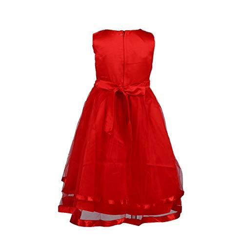 Pingtr Baby Mädchen Prinzessin Kleid,Mädchen Hochzeit Kleid Festzug Baby Rüschen Tüll Prinzessin Kleider Rock