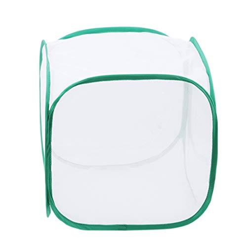 HQRAN Gewächshaus Transparent Anbau Raum Anti-Moskito-Box Schmetterlingskäfig Wachsen Zelt, Mini Gewächshaus Wachsen Haus Green30 * 30 * 30
