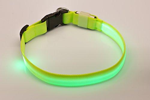 LED Leuchthalsband Basic 1 per USB aufladbar, Größe M, Grün - 5