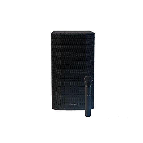 PL-AUDIO ECCO LINE Akku-Box Maxi Pl-audio