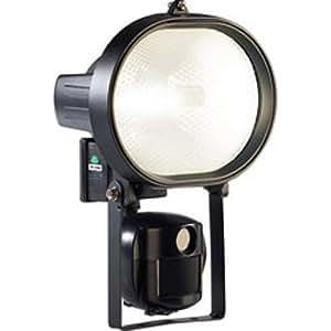 Camera Espion + Lampe Halogène 500 W (sauvegarde carte SD)