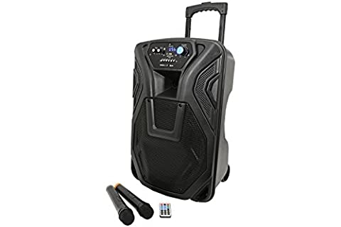 BUSKER-12 Rechargeable Battery Powered Portable PA with 2 Wireless Microphones and Bluetooth Connectivity,