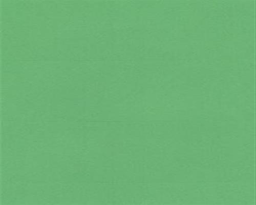 Inkjet Kopierer Tintenpatronen (800 Stk. Selbstklebende GRÜNE Etiketten selbstklebend Adressetiketten Etikettenformat 105.0x70.0mm , 100 Blatt DIN A4, 70g/qm, geeignet für Inkjet Laser Kopierer)