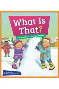 What Is That?: A Book about Question Marks (Punctuation Station)