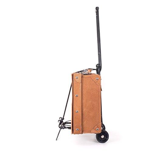 Andersen Kofferroller Einkaufsroller Trolley – Größe M - 5