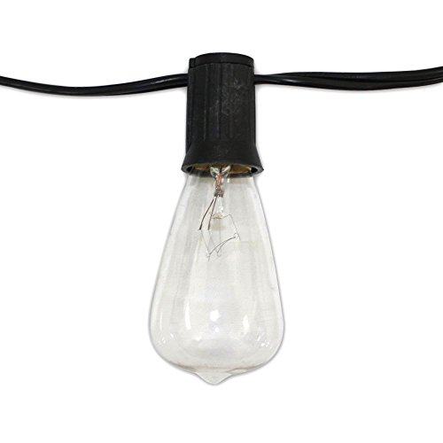 Edison Vintage Serie 48-ft Lichterkette mit 24 Light Sockets und 24 klare Birnen (String Light Company)