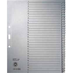 Leitz 10 x Register A4 1-31 100g/qm grau