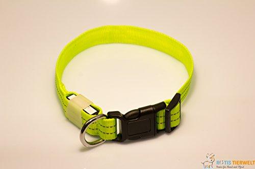 LED Leuchthalsband Basic 3 per USB aufladbar, Grün, Größe M - 3