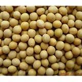 500g - Soy Beans Soyabeans Soybeans SOYA Beans Soy Beans Fat Free Soybean Protien