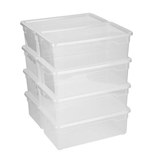 rotho 6611500096WS Aufbewahrungsboxen 8-er Set Clear Box Lady Shoe 5 l mit Deckel - AppMyBox
