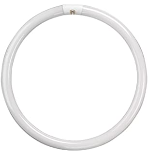 Starter Ring 22W FCL//T9 22w//CW 28 29 30 mm circular Lamp Tube 22 w cold white