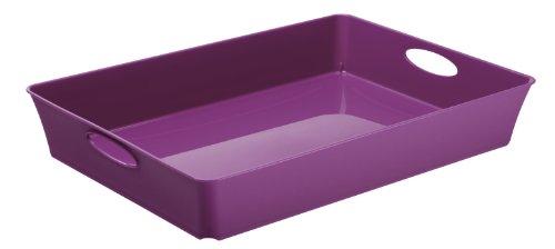 rotho-1124080000-living-box-flat-polypropylene-purple-45-l