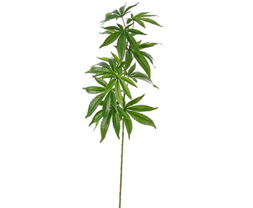 Palmlilie 140 cm