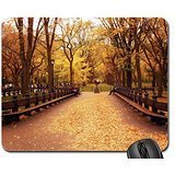 Herbst in Central Park, New York City, New York Mauspad, Mousepad (Wälder Maus Pad)