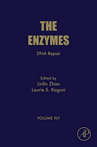 DNA Repair (ISSN Book 45) (English Edition)