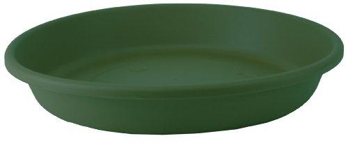 Akro 14 (Akro Mils sli14000b91Classic Untertasse für 35,6cm Classic Topf, Evergreen, 13.88-inch)