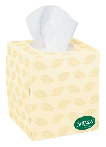 surpass-boutique-100-recycled-fiber-facial-tissue-2-ply-110-box-36-carton-sold-as-1-carton