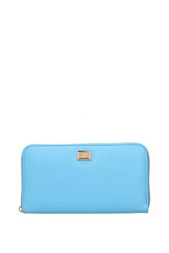 Dolce&Gabbana, Herren Damen-Geldbörse, himmelblau (Himmelblau) - BI0473A10018H607