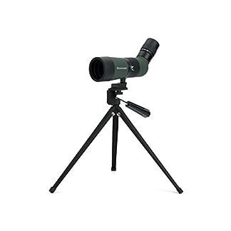 Celestron LandScout 10-30x50mm Angled Spotting Scope