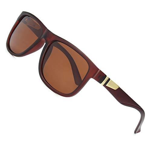 CGID Retro 80er Sport Designer Klassische Sonnenbrille für Männer und Frauen Polarisierte Sonne Gläser Sonnenbrille Brille mit Metalldekoration 100% UV400 Schutz Braun Linse MJ44