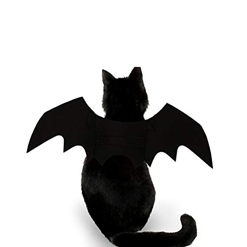 strimusimak Neue Halloween-Peter-Dog Welpe Black Cool Bat Wing Make Up Kostüme (Coole Make Up Kostüme)