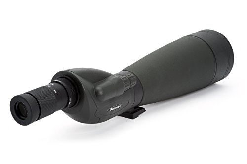 Celestron 52335-CGL Trailseeker 100 - Straight Spotting Scope Black