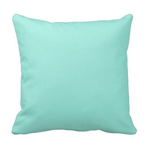 KAKICSA Light Aquafresh Aqua Blue Green Fashion Color Square Custom Throw Pillow Case Cushion Cover Pillowcase Pillow Cover 18x18 (Kids Aquafresh)