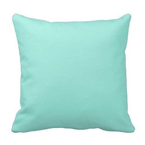 KAKICSA Light Aquafresh Aqua Blue Green Fashion Color Square Custom Throw Pillow Case Cushion Cover Pillowcase Pillow Cover 18x18 (Aquafresh Kids)