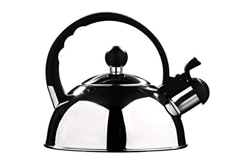 Premier Housewares - Tetera hervidor con silbato (acero inoxidable, 1.0 L) acabado...