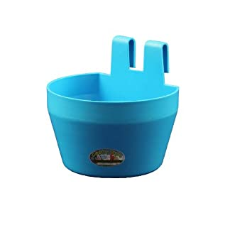 Coop Cup/Galley Pot Blue Chicken, Avery Cage Coop Cup/Galley Pot Blue Chicken, Avery Cage 31yeEsQFg3L