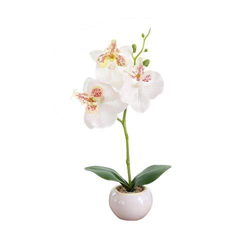 XdremYU Gefälschte Blumen, künstliche Deko Blumen echte generische Touch Gefühl, Schmetterling Orchidee Blume Bühne Garten Braut Hochzeit Bouquet für Home Decor Büro Party White
