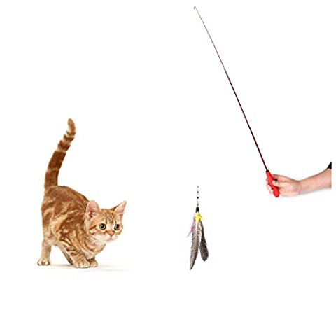 VENMO Kitten Cat Da Bird Feather Wand Toys for Cats, Enscalable Dangle Rod with 2 Feather Refills Go Cat Interactive Funny Teaser