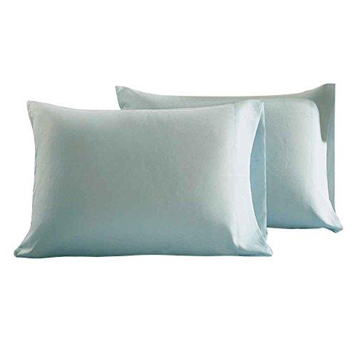 Masterein 2pcs Umschlag Typ Pillowcase Fest Polyester Rechteck Schlafzimmer Kissenbezug Home Office-Kissen-Schutz-Fall Hellblau 51*76cm -