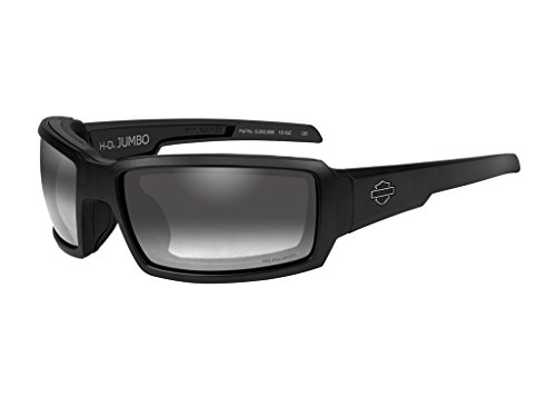 Harley-Davidson Wiley X Jumbo Light Adjusting Motorrad Brille