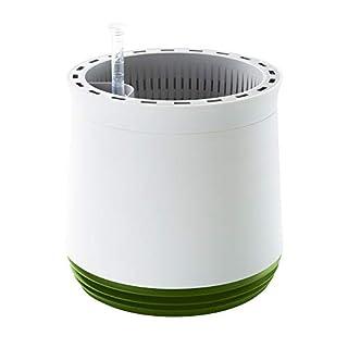 AIRY Pot - Luftreiniger Blumentopf Für Allergiker - Patentierter Pflanzen-Topf Als Natürlicher Raumluftfilter Gegen Schadstoffe, Haus-Staub, Pollen, Geruch (Grün)