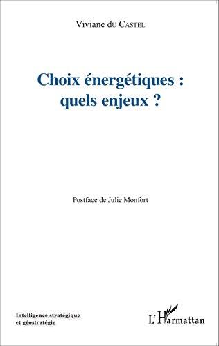Choix énergétiques : quels enjeux? (Intelligence stratégique et géostratégie) par Viviane Du Castel
