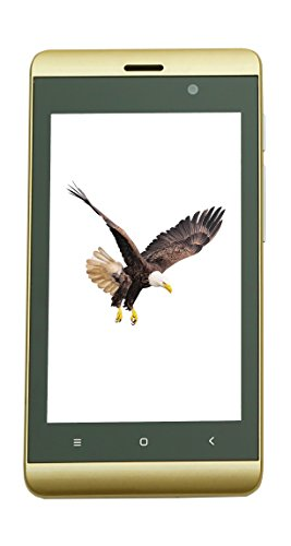 Videocon Starr 100 (Gold) - Android (4G VoLTE) Smartphone image