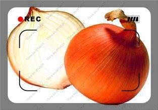 200pcs / bag géant Oignon jaune doux espagnol graines graines de légumes germination de 95%, Giant graines de légumes d'oignon pour le jardin bonsaï