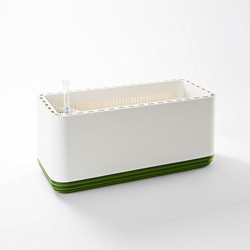 AIRY Box - Innovativer Pflanzentopf als hochwirksamer Luftreiniger - Natürliche Luftreinigung mit Zimmerpflanzen Ohne Strom u. Chemie (Late Spring)