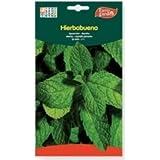 Semillas Hierbabuena. Pack 2 sobres