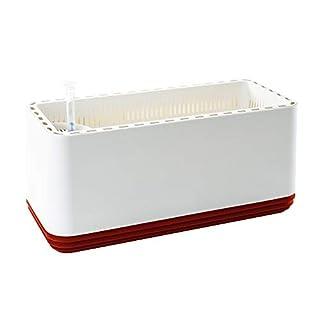 AIRY Box - Luftreiniger Blumentopf für saubere Raumluft. Patentierter Pflanzen-Topf als natürlicher Raumluftfilter, ohne Strom u. Chemie (Hot Chili)