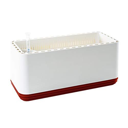 AIRY Box - Luftreiniger Blumentopf für Allergiker - Patentierter Pflanzen-Topf als natürlicher Raumluftfilter gegen Schadstoffe, Haus-Staub, Pollen, Geruch (Hot Chili)