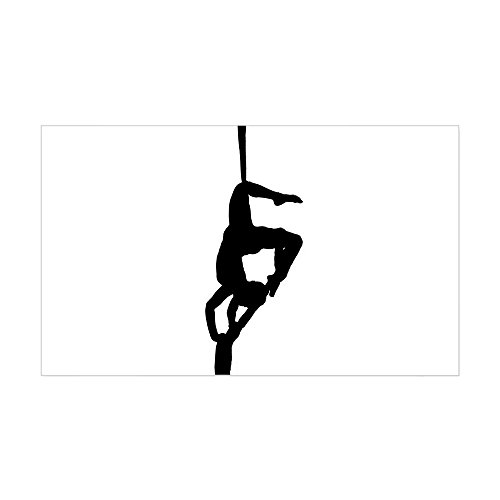 cafepress-flying-sticker-rectangle-rectangle-bumper-sticker-car-decal