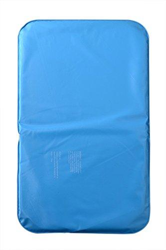 Gulin Wasser Kopfkissen Kissen, 49 * 28cm, Kühlmatte zur Regulierung der Körpertemperatur, Selbstkühlende Matte kühldecke für Hunde Katzen Haustiere