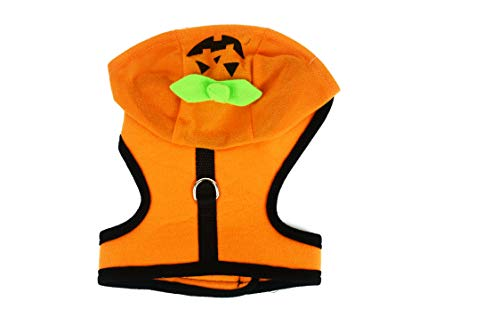 Black Duck Brand Halloween-Kostüm, Schwarze Ente Passend für 15,2 cm bis 22,9 cm - Kürbis, Engel, Skelett, Small, Pumpkin Costume