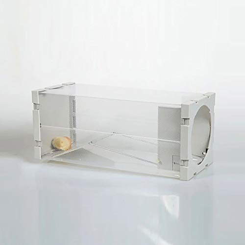Trampa para ratón, fácil de configurar, duradero, no se mata, reutilizable, atrapa ratones de roedores (blanco)