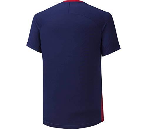 Mizuno Herren Shadow Graphic T-Shirt, Tomato/Astral Aura, L